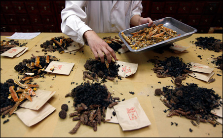 A worker prepares traditional Chinese herbal medicines at Beijing's Capital Medical University Traditional Chinese Medicine Hospital.