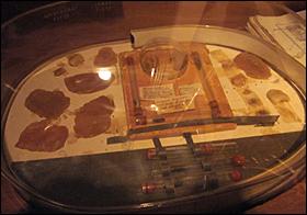 The infamous Podiatrist specimen collection