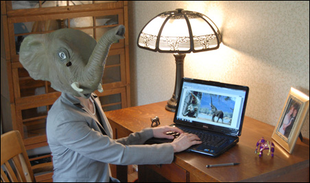 Professor Patricia Pachyderm is ready to make her point.
