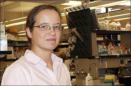 Prof. Claudia Schmidt-Dannert