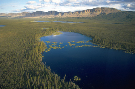 Oscar Lake in Canada's Northwest Territories is one site in the boreal forest.