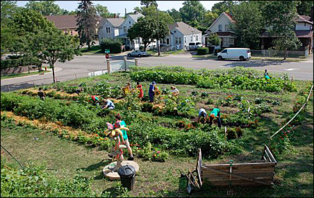 Like the Victory Gardens of the 1940s, growing spaces are cropping up in empty spaces to grow and share food.
