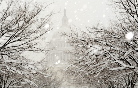 Heavy snow fell on the grounds of the U.S. Capitol last Saturday.
