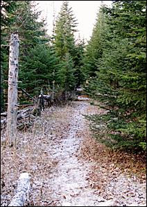 Lake Superior Hiking Trail