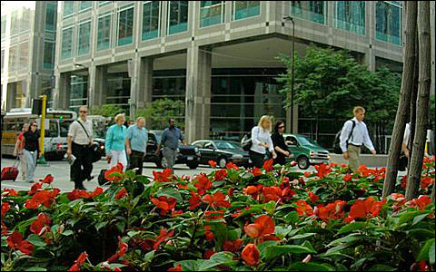 The new Downtown Improvement District has turned Minneapolis cleaner and greener.