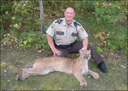 Beltrami County Sheriff's Deputy Lee Anderson shows a mountain lion that was struck and killed Friday night on Carr Lake Road.