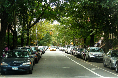 Greening advocates aim for more of this (a side street in Brooklyn) ...