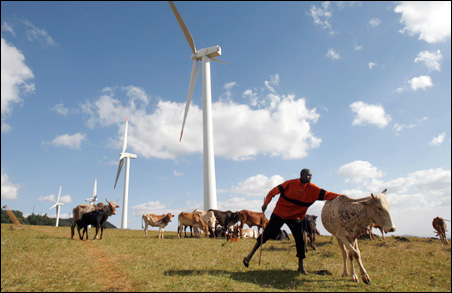 A Masaai herdsman looks after his cattle near the power-generating wind turbines at the Kenya Electricity Generating Company station in Ngong Hills.