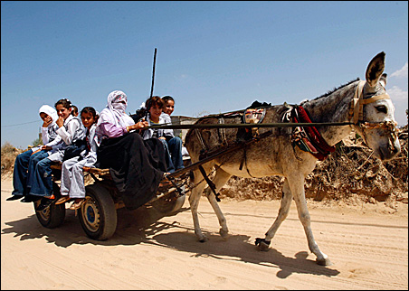 Palestinian students ride on a donkey cart as they return home from a United Nations school east of Khan Younis in the southern Gaza Strip, Aug. 31, 2009.