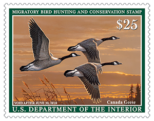 2017-2018 Federal Duck Stamp by James Hautman
