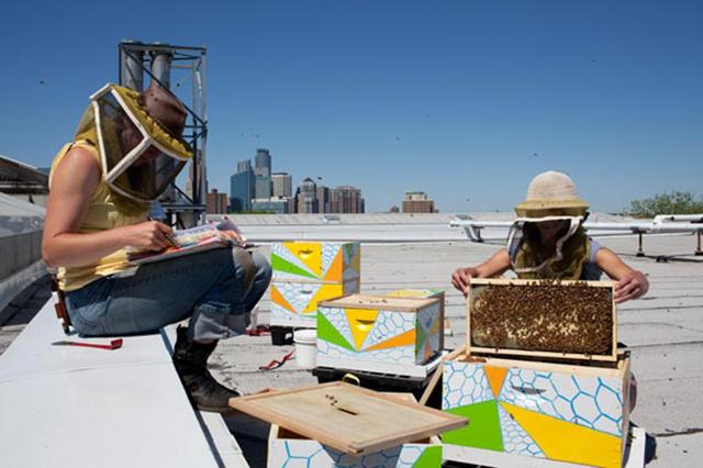 Hive minds: urban beekeeping in high places | MinnPost
