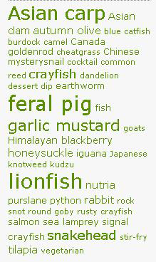 Some popular invasivore.org ingredients