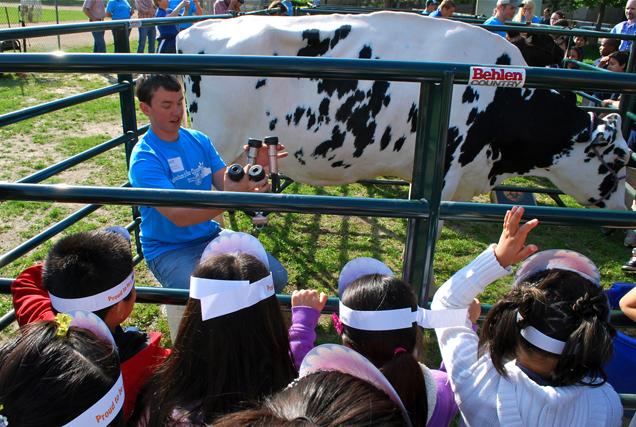 Matt Huot shows our kids how to milk a cow